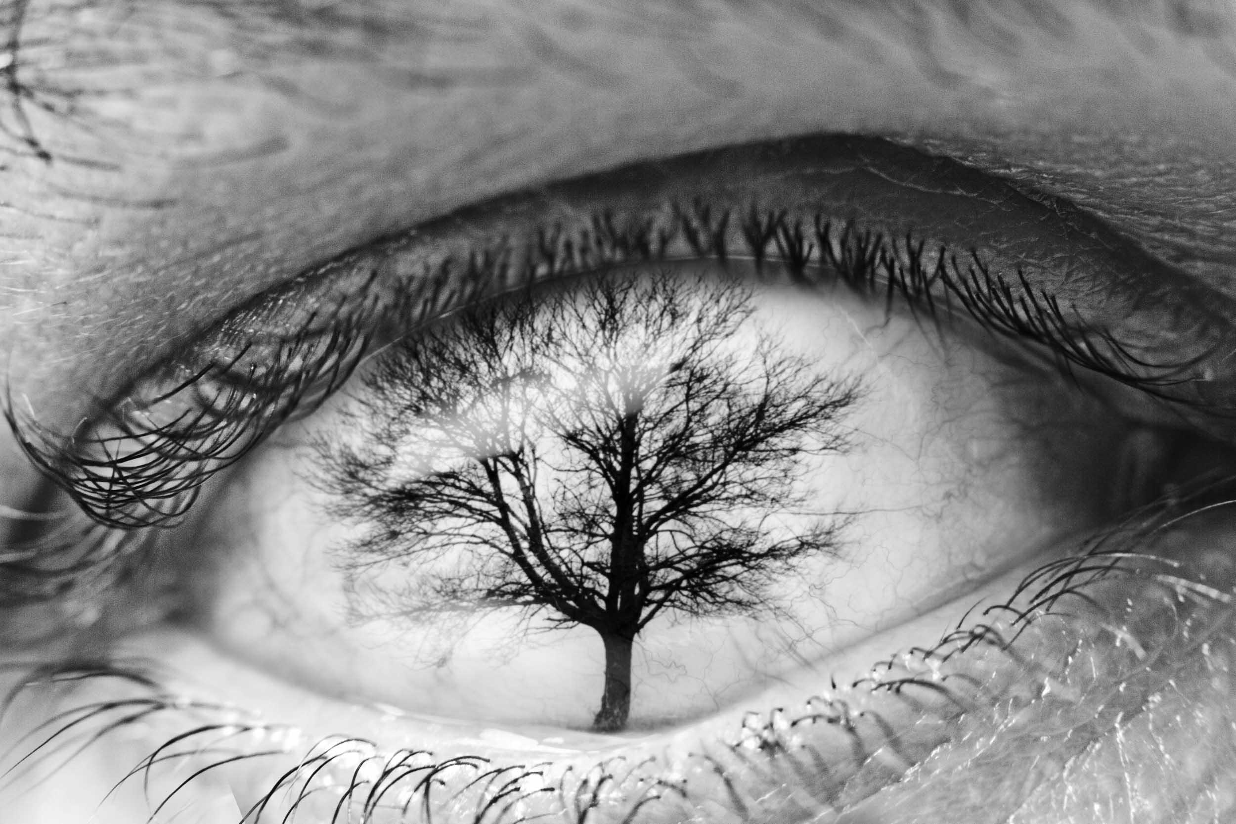 Tre'eye'