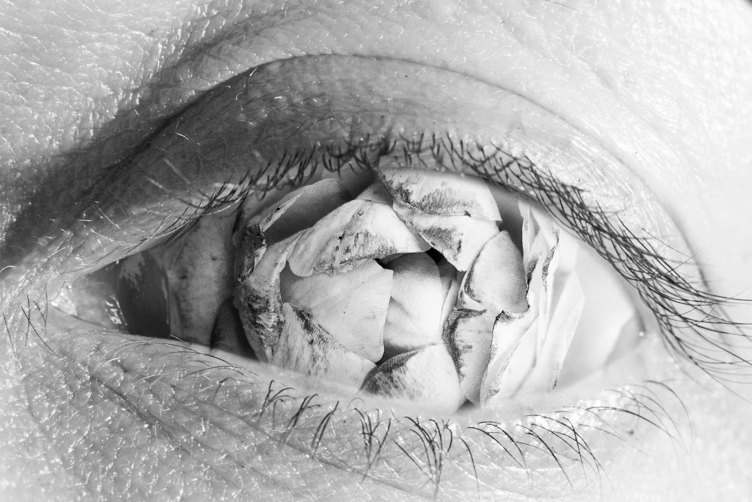 Flow'eye'r II