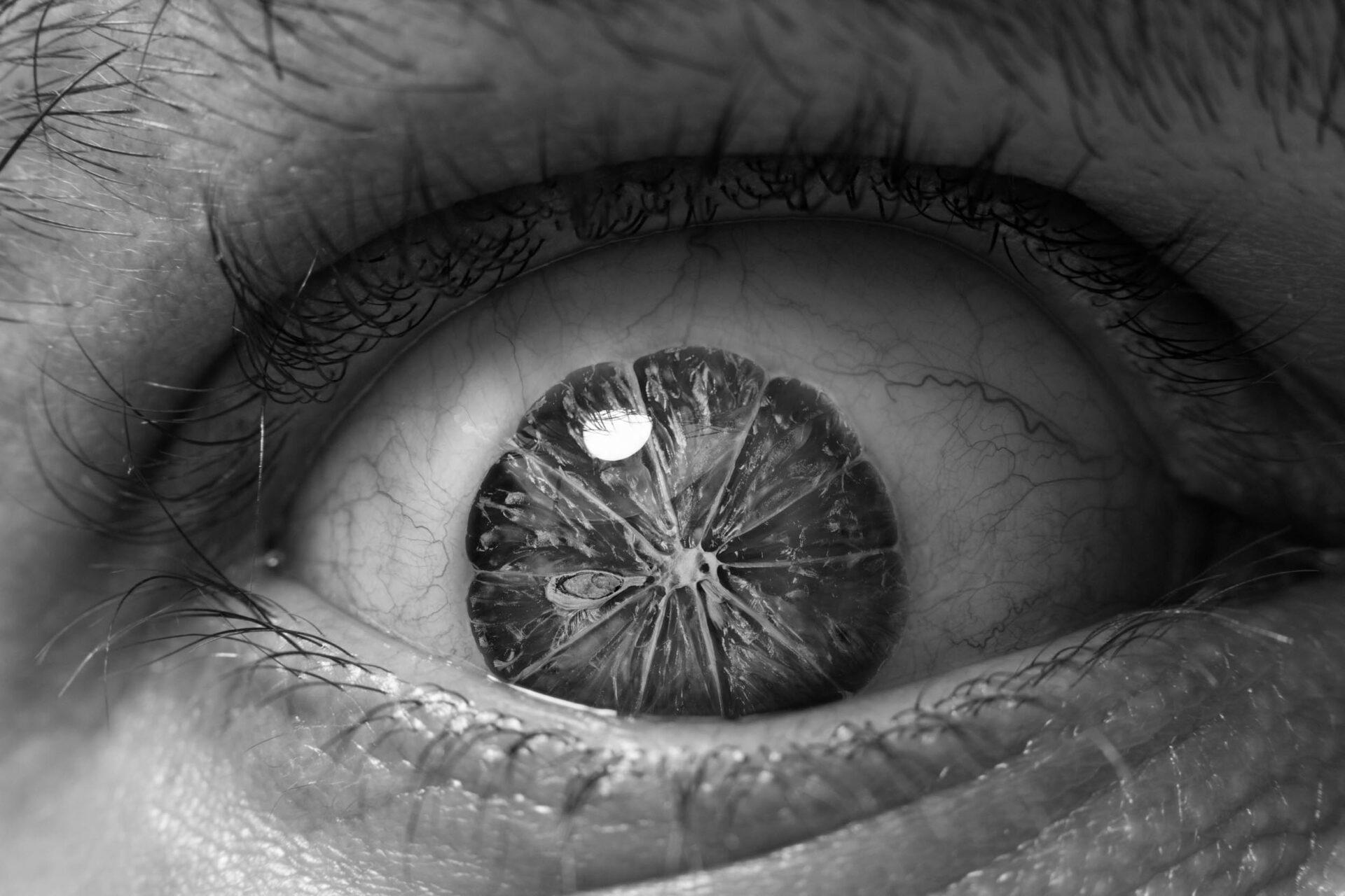 L'eye'mon II