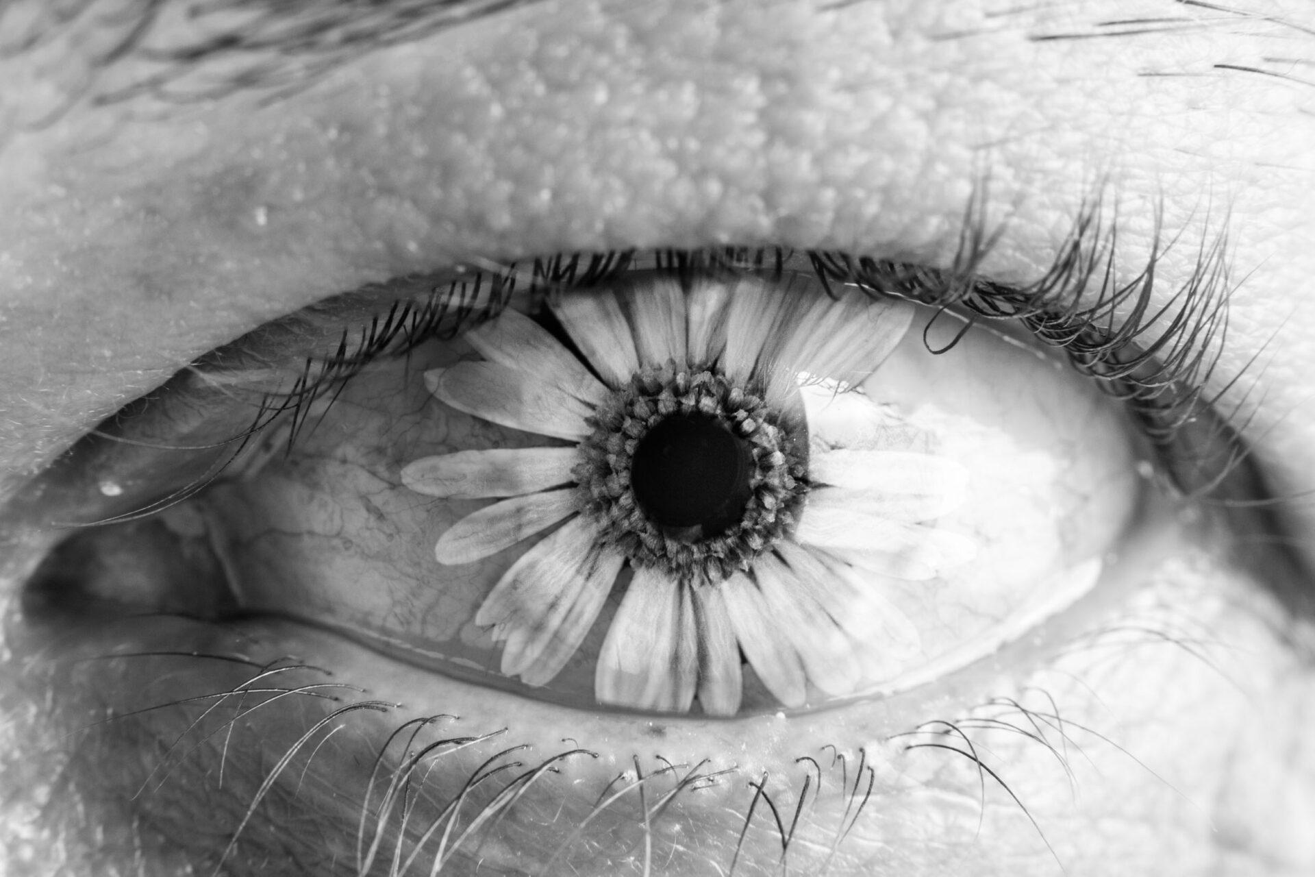 Flow'eye'r